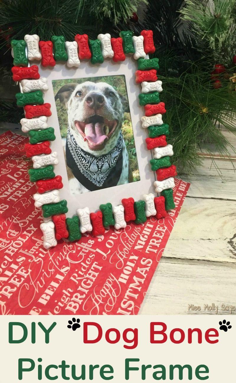Ein DIY Hundeknochen-Bilderrahmen ist das perfekte Weihnachtsgeschenk für Tierliebhaber + lustige Geschenkideen für Haustiere #SpotShot   – Miss Molly Says