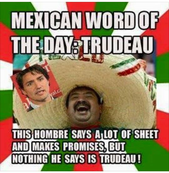 Funny Gay Mexican Meme : Mexican word if the day trudeau funny memes pinterest