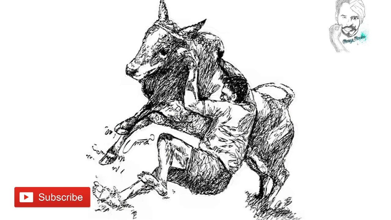 Image result for tamilnadu bulls sketches indian drawings