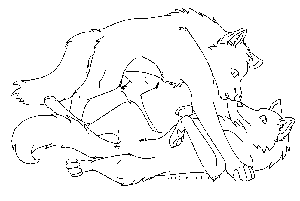 Cute Wolves Kissing Sketches