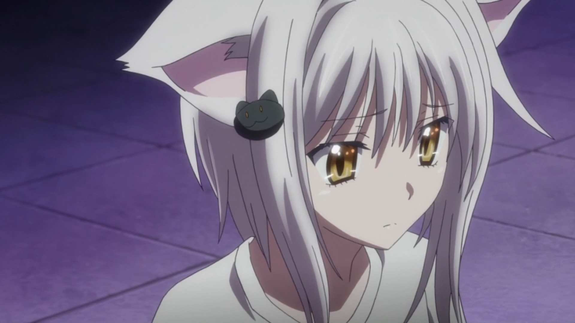 high school dxd koneko cat | High School DxD BorN episode 2: Furry ...