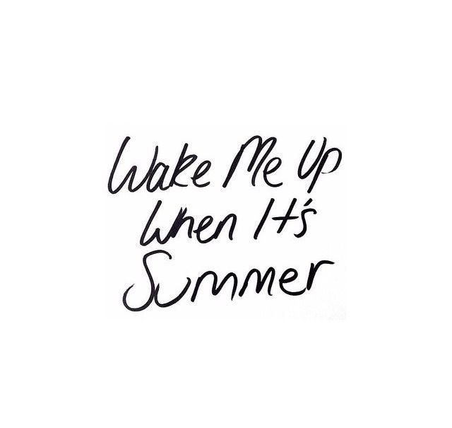 Miss Summer Summer Quotes Instagram Summer Quotes Summer Instagram Captions