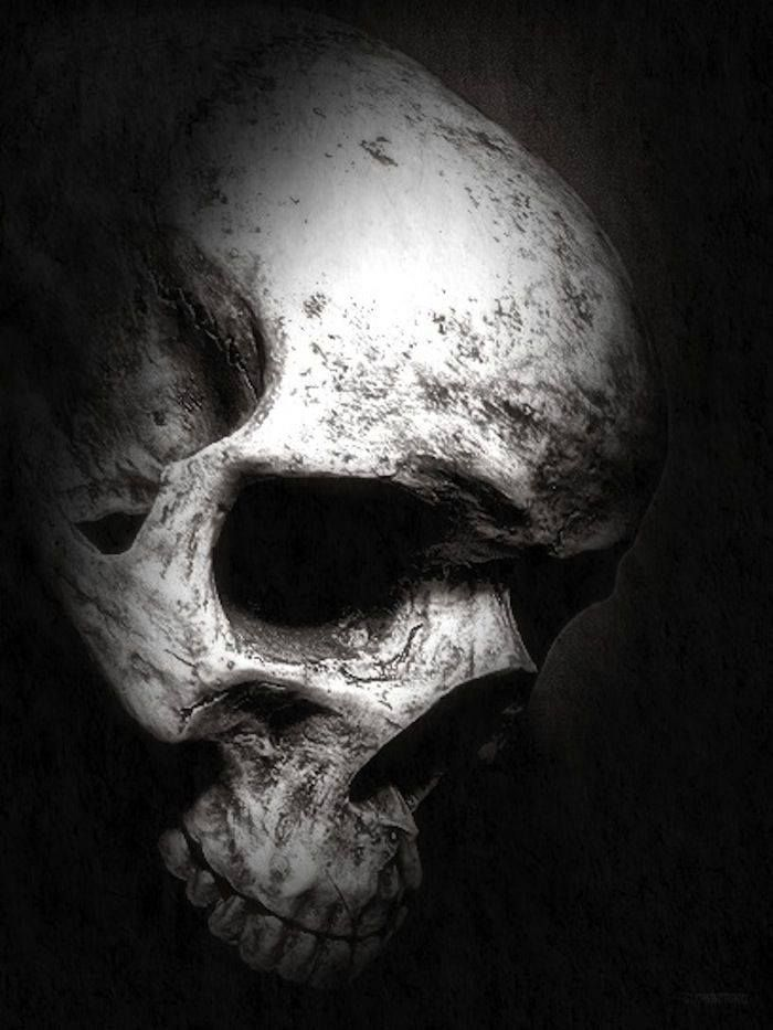#Skulls, #Calaveras, #Bones, #Huesos