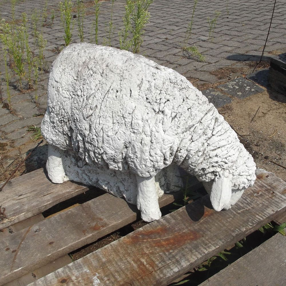 Schaf Lamm Lammchen Grasend Tier Beton Balkon Terrasse Garten Deko Ausstellung Schafe Laemmchen Tiere