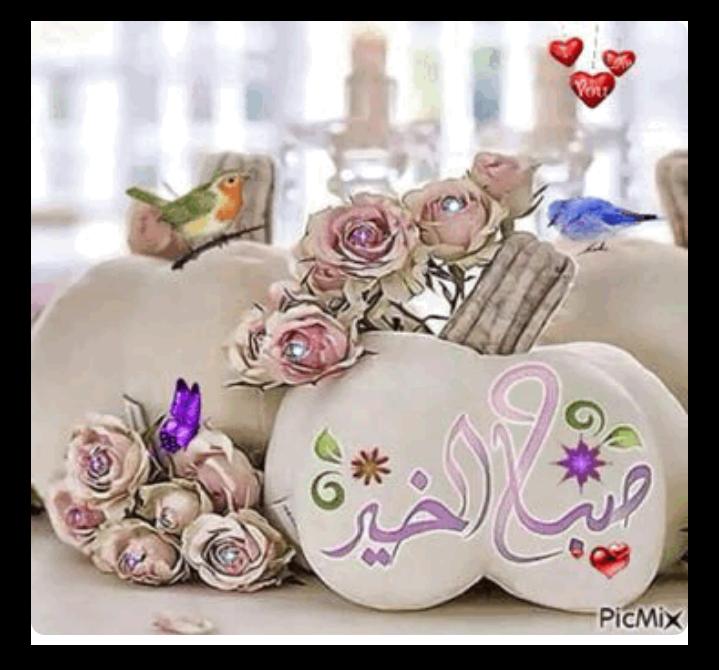 صور صباح الخير2019 اجدد صور صباح الخير صور رقيقة بالوان جميلة2019 Good Morning Cards Morning Greetings Quotes Good Morning Arabic
