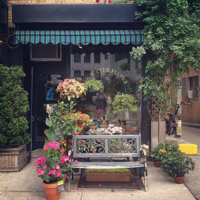 I Want A Sweet Little Successful Store. Blue Water Flowers
