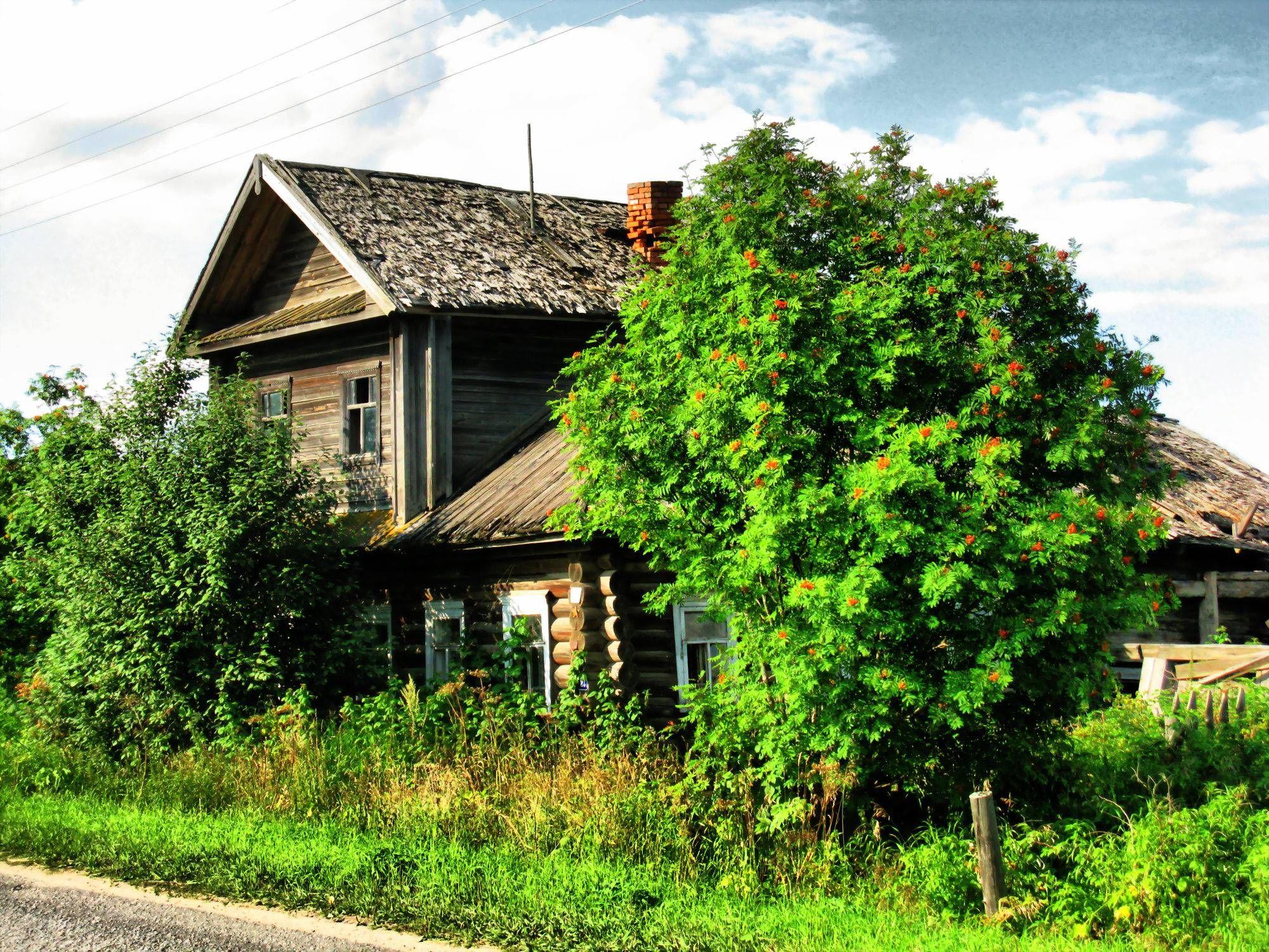 Drvena kuća u švicarskoj Slike prirode Pozadine za