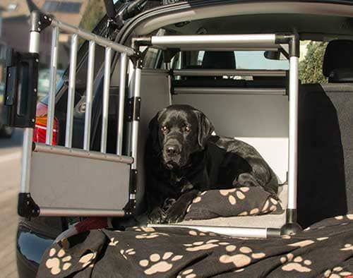 hundebox gr e labrador wie gro muss sie sein die. Black Bedroom Furniture Sets. Home Design Ideas