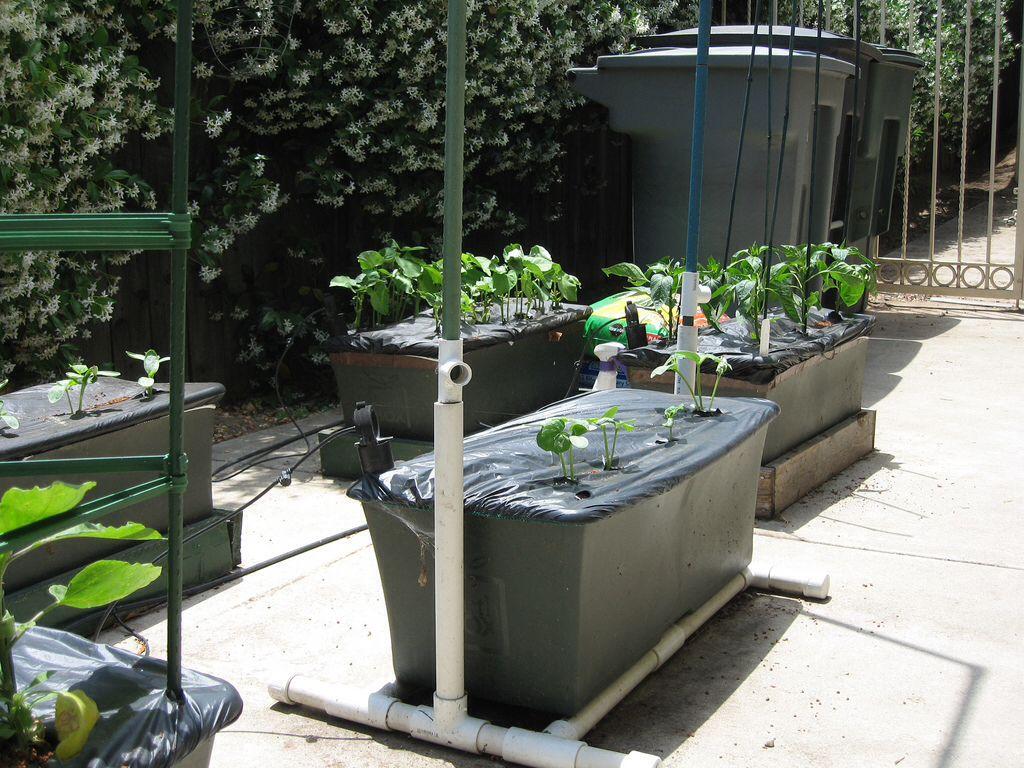 Gardens · PVC Pipe Earthbox Trellis