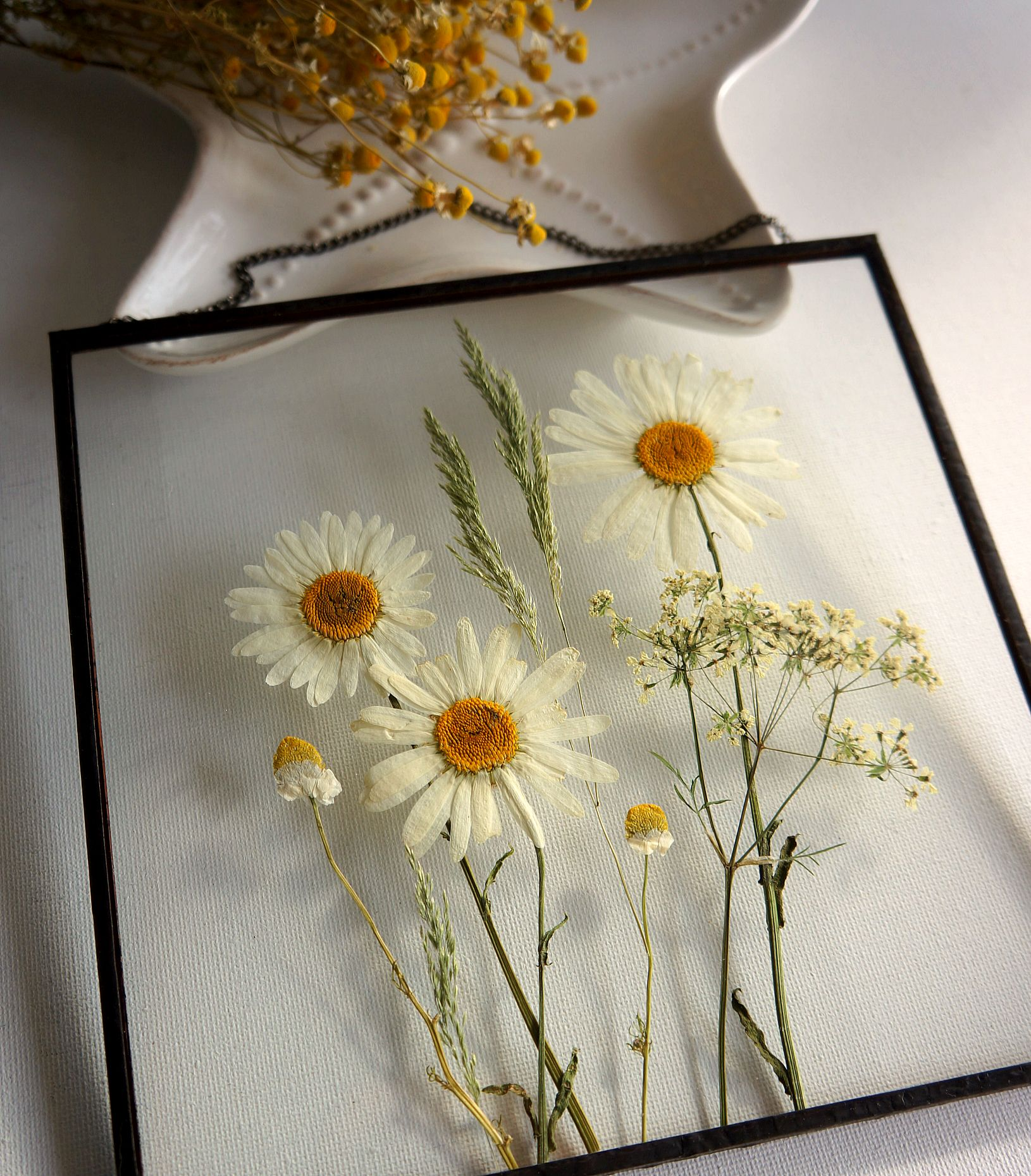 Real Pressed White Daisies Summer Flowers Gift Daisy Wall Hanging Pressed White Flowers Glass Frame Daisies Wall Art Rustic Farmhouse Decor Flower Wall Art Pressed Flower Art Nature Wall Art