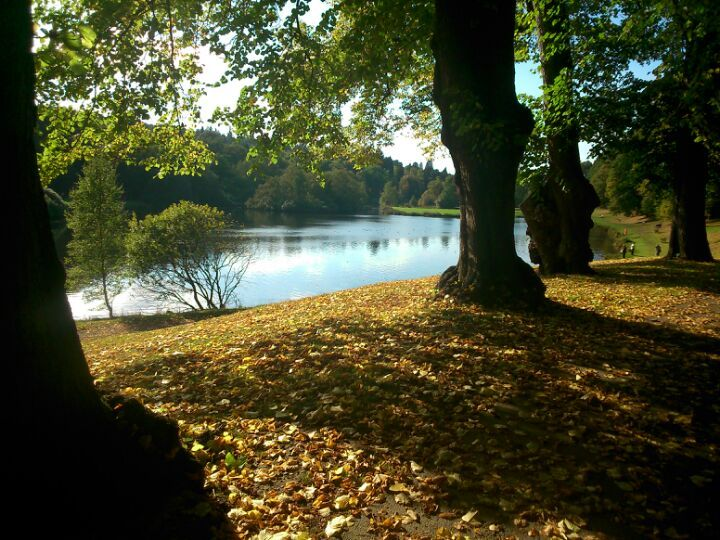 Callendar Park In Stirlingshire Stirlingshire With Images Most Beautiful Places