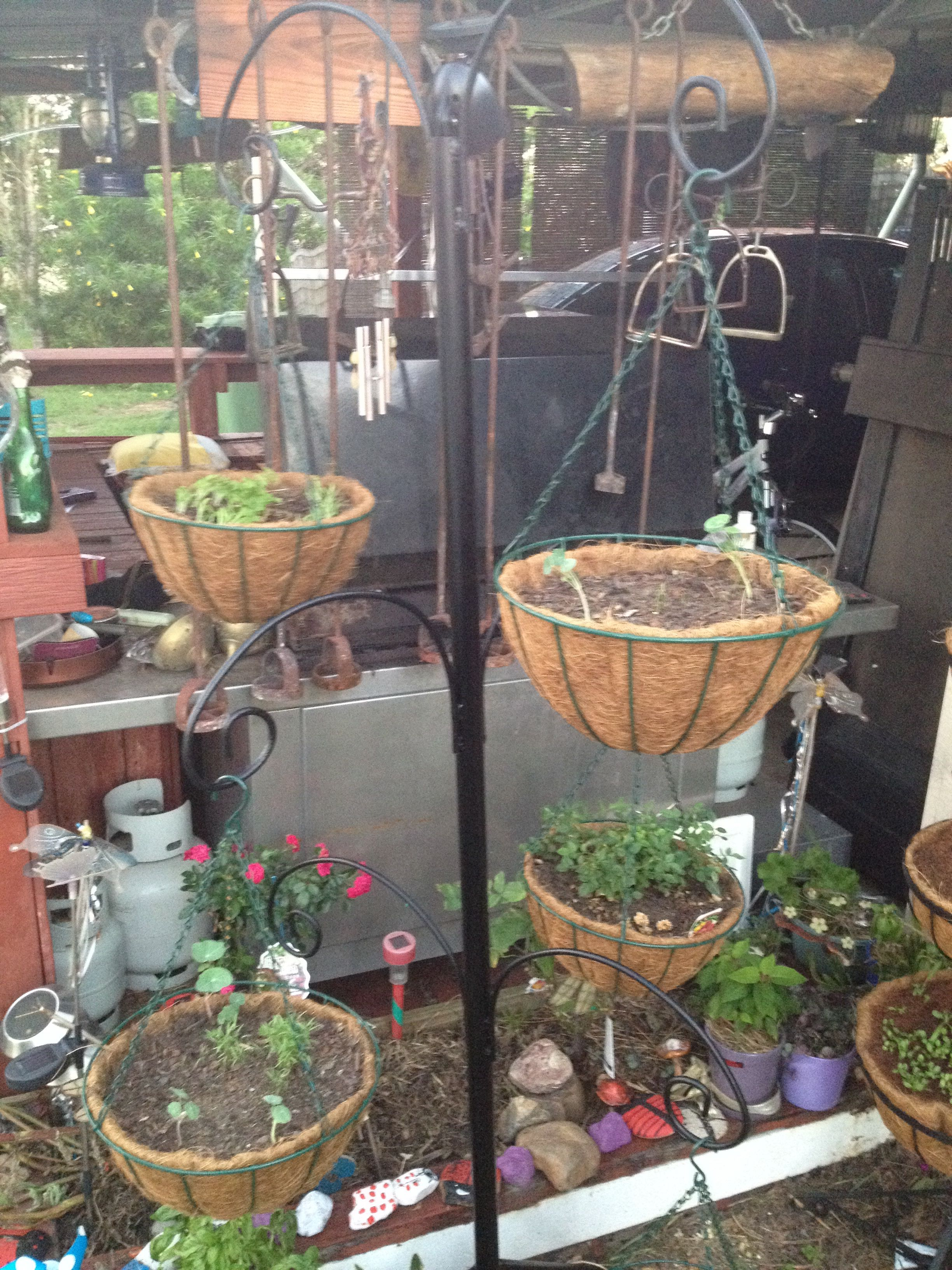 A hanging basket stand made by myself and my partner We used a