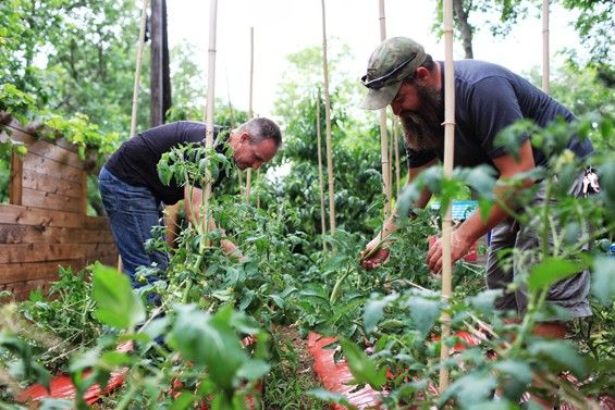 Veterans Are Putting Down Their Guns and Taking Up Farming | Veteran ...