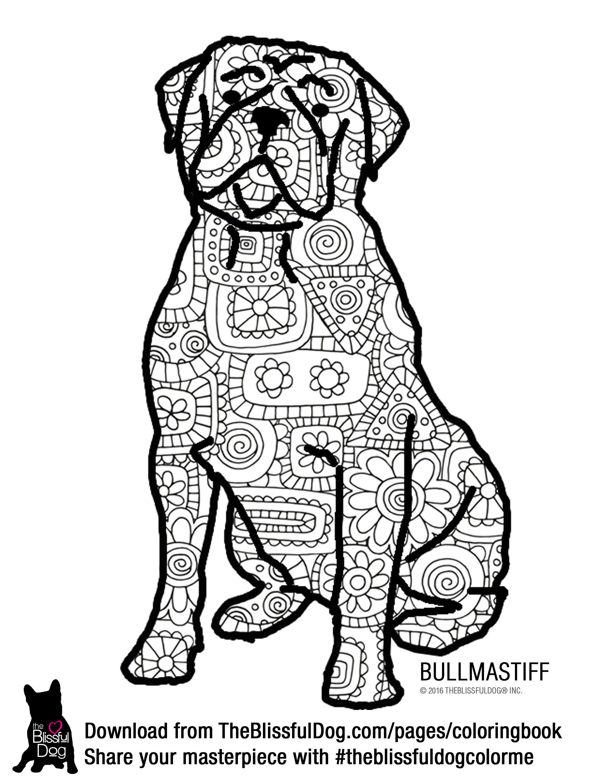 Color This Bold Bullmastiff In Brights Pastels Or Jewel Tones Hell