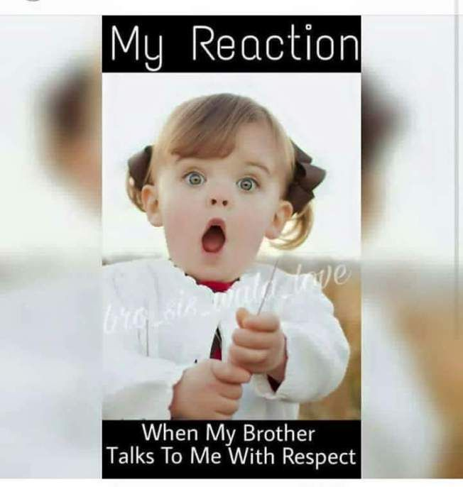 Siblings Funny Quotes Brother Quotes Funny Sister Quotes Funny