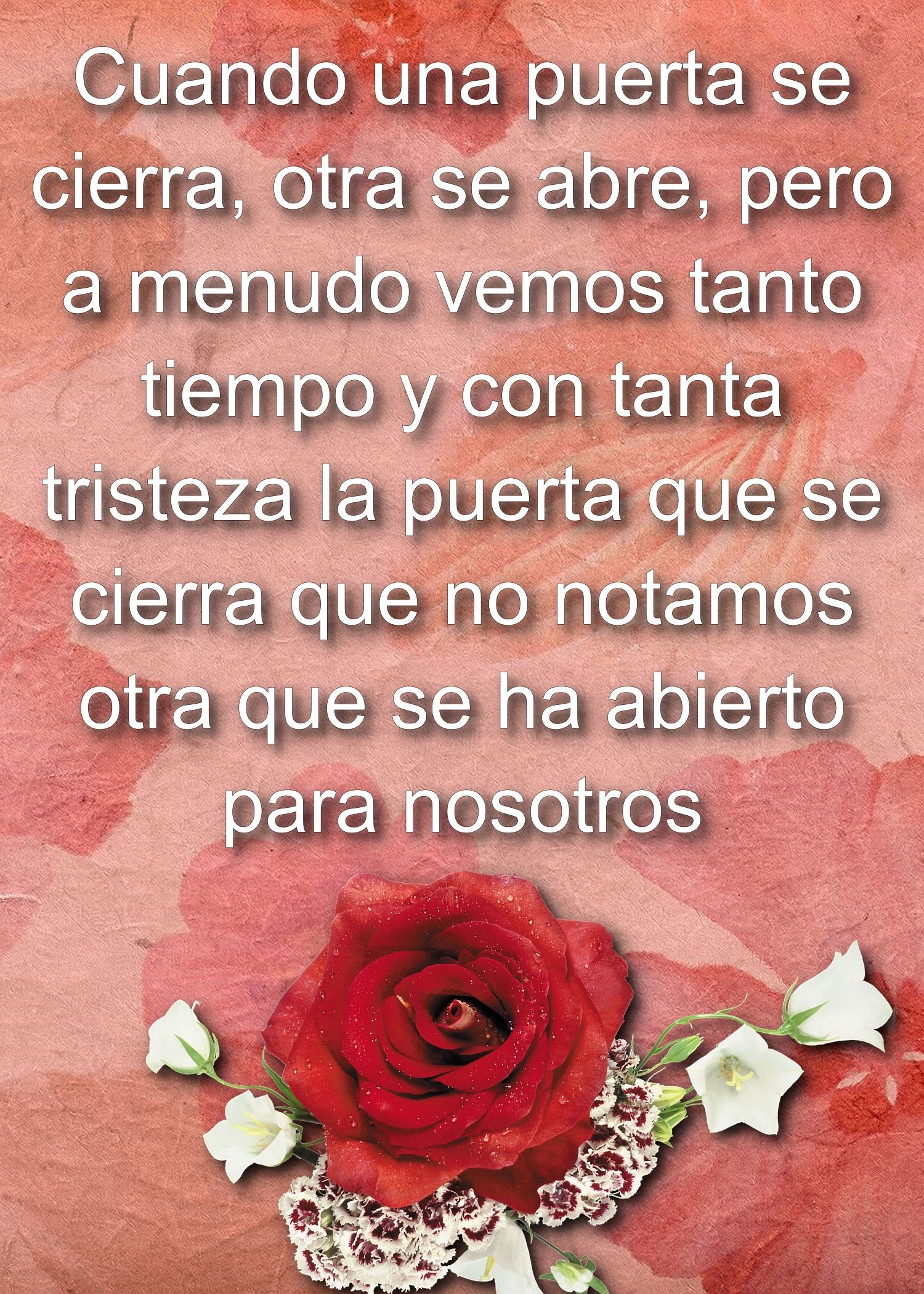 Pin by hevy hv on poemas pinterest