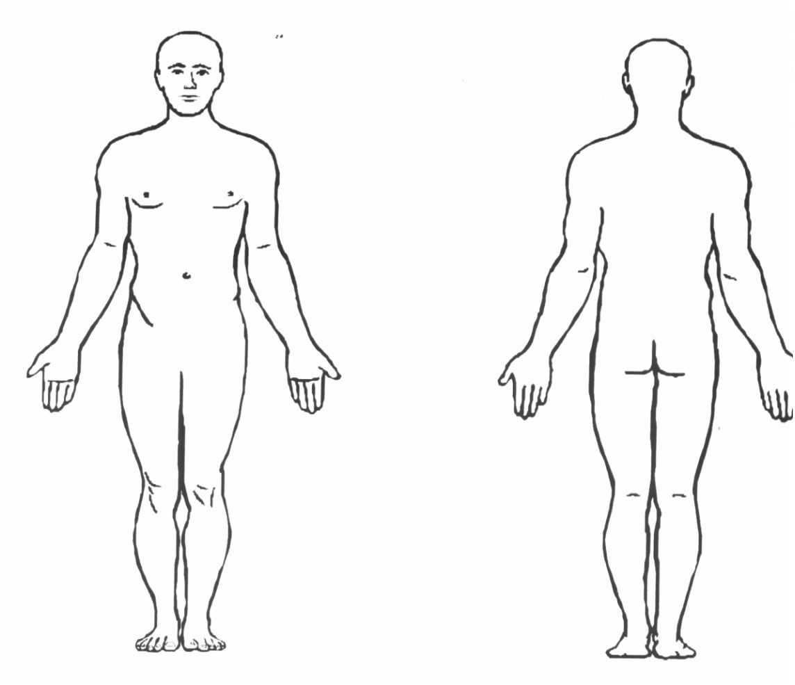 blank human body diagram blank human body diagram human anatomy Endocrine System Blank Diagram