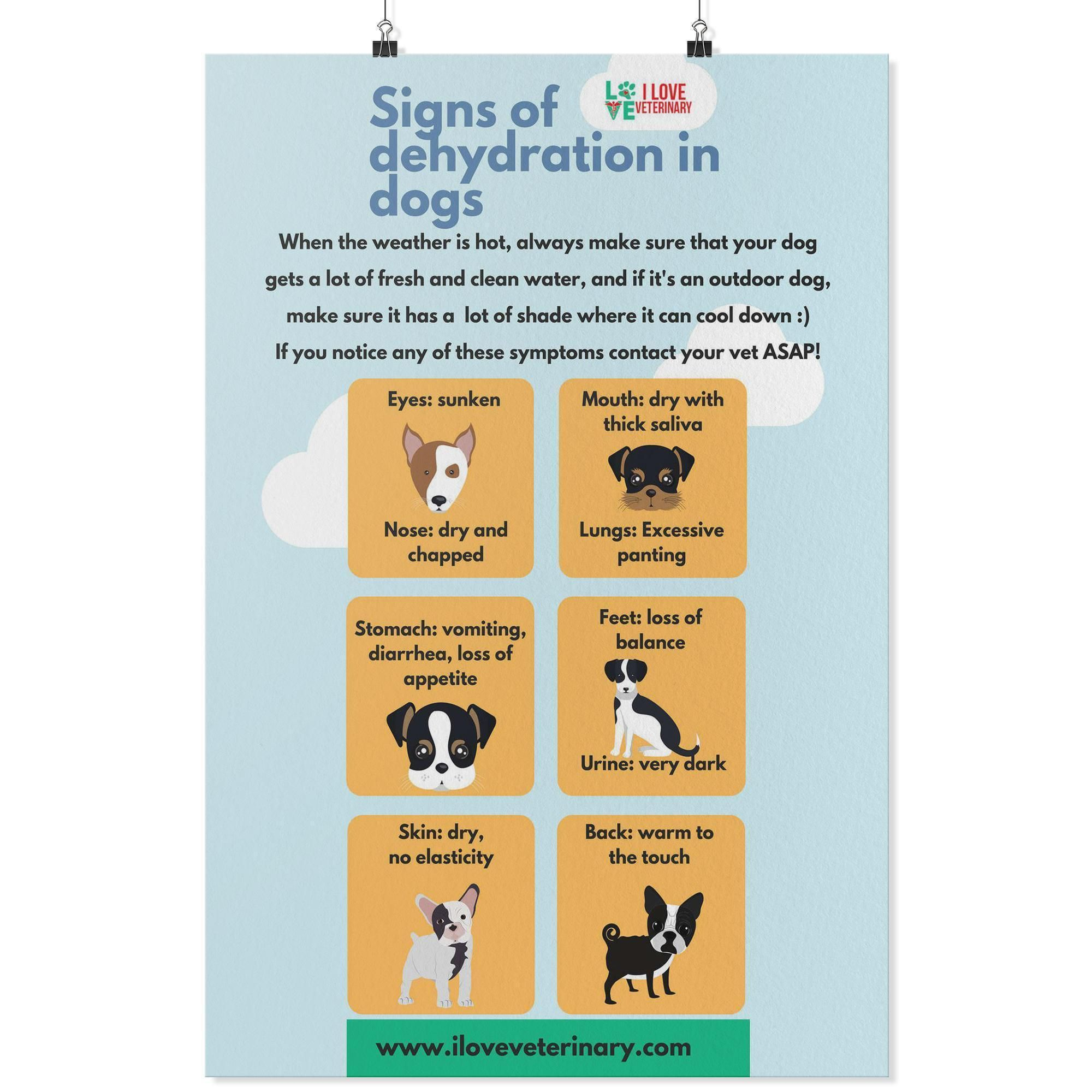 Signs Of Dehydration In Dogs Poster In 2020 Dog Poster Gifts For Veterinarians Signs Of Dehydration