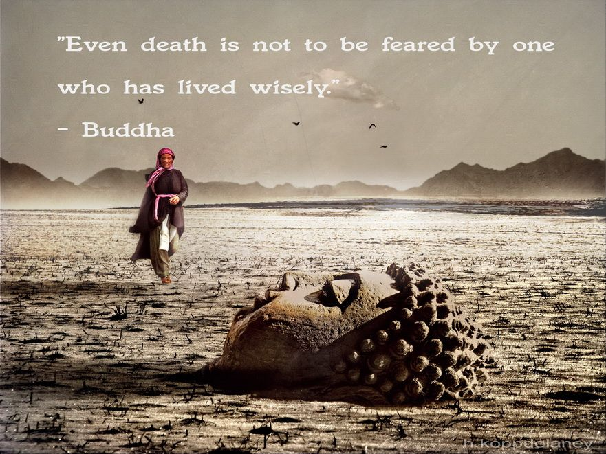 buddha citater sjove danske citater   Google søgning | Citater | Buddha quote  buddha citater