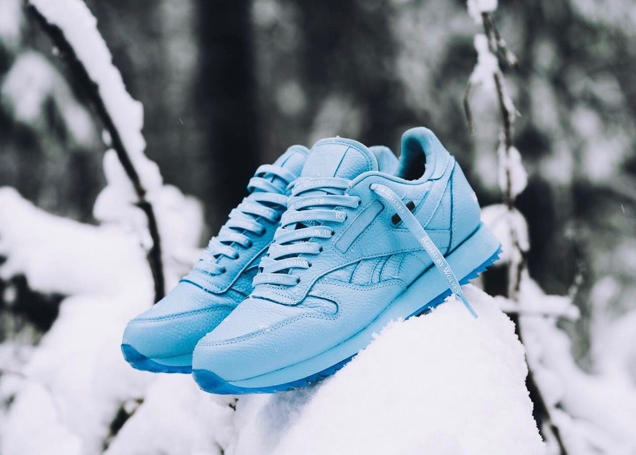 hot sale online discount sale big discount Raised by Wolves x Reebok Classic Leather | Classic leather ...