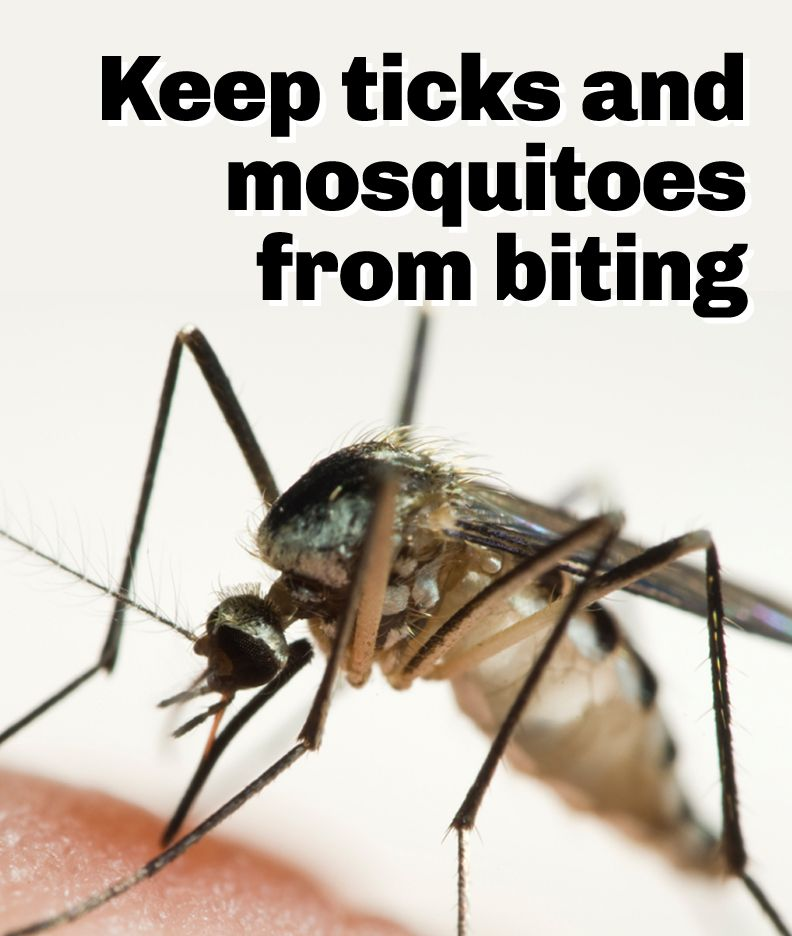 Mosquito Repellent Systems For Yard Mosquito Misting