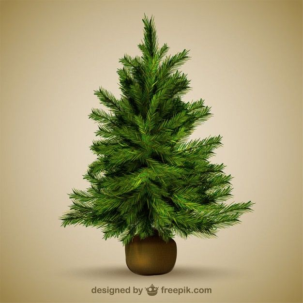 Christmas tree illustration | Vectors&MockUps | Pinterest | Mockup