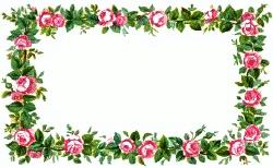 Pink+Tea+Rose+Clip+Art   rose 4 pink rose frame a public domain png image