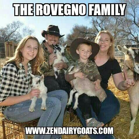 Zen Dairy Goats Funny Memes Crazy Funny Memes Memes