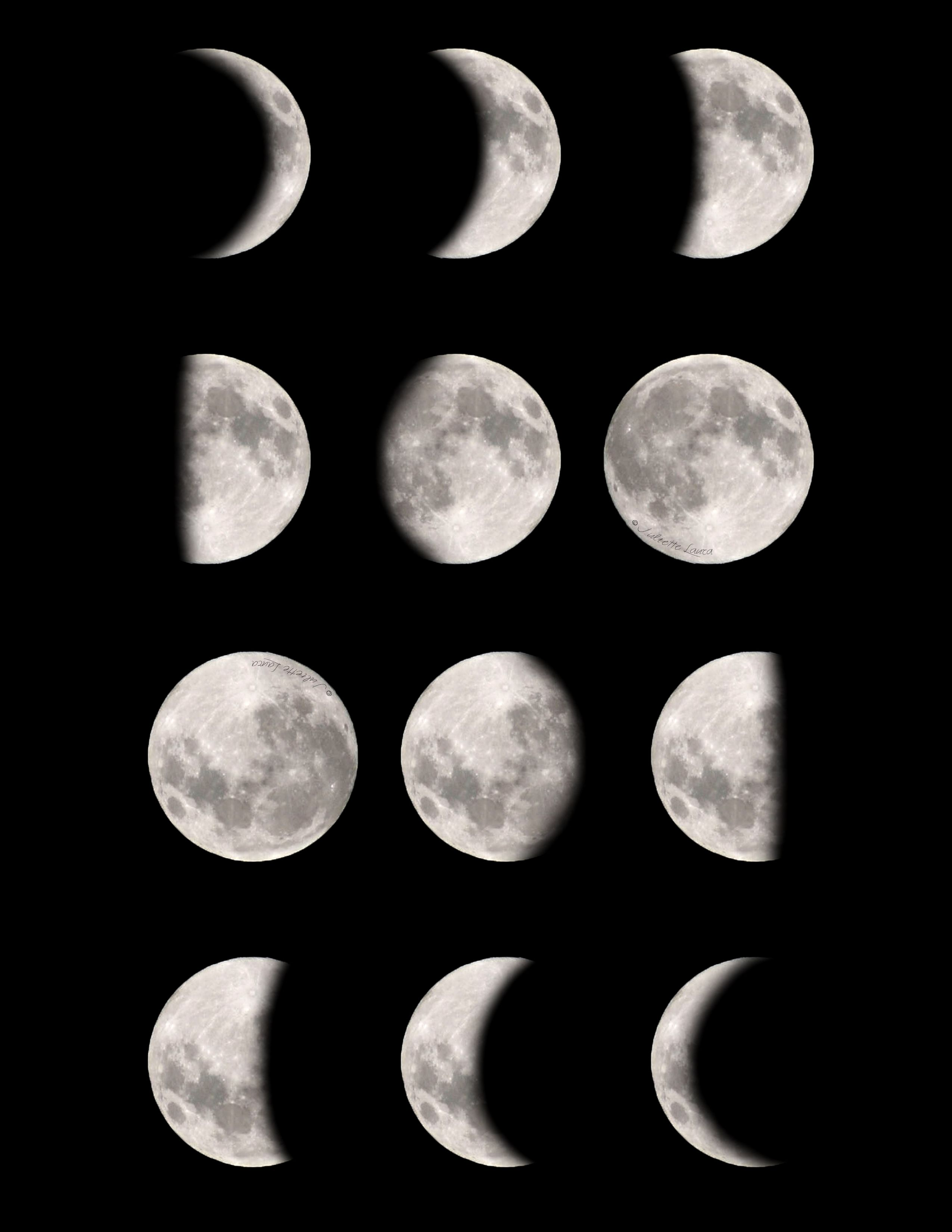 graphic relating to Moon Phases Printable identify Moon levels no cost, downloadable printable! Most straightforward Crafts