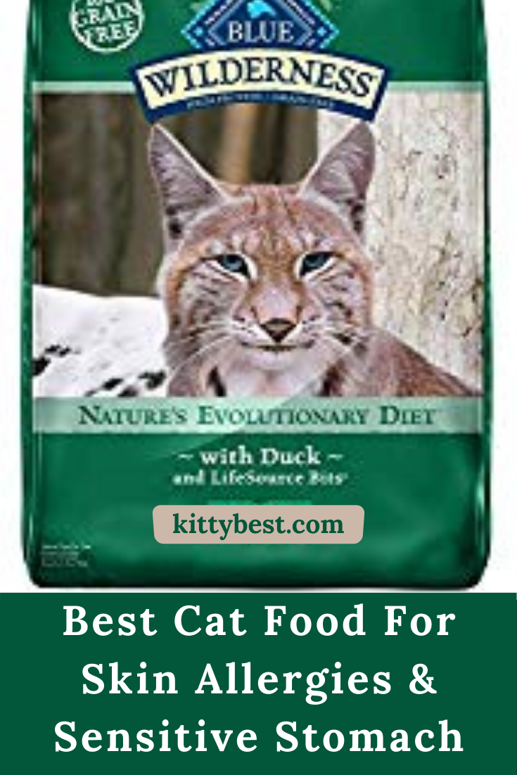 Best Cat Food For Skin Allergies In 2020 Best Cat Food Cat Food