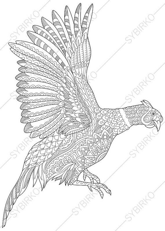 Coloring Pages For Adults Pheasant Bird Adult Coloring Pages