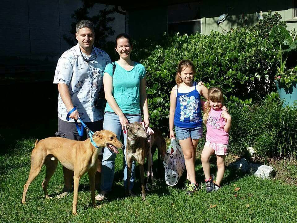 Huckleberry is home forever with his new family, including Sophia the greyhound!