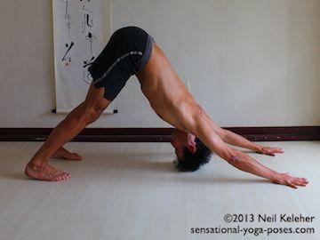 downward facing dog  yoga shoulder yoga for men