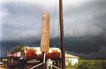 WILLIAM CHRISTENBERRY (B. 1936)  Corn Sign with Storm Cloud, Near Greensboro, Alabama, 1977