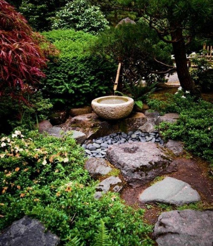 petit bassin d eau, galets et pierres, plante couvrante sol, arbres