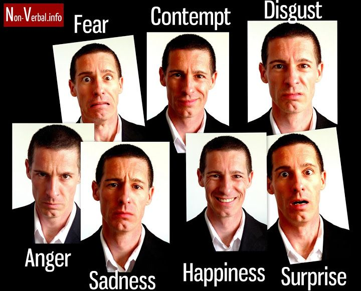 7 facial expressions of emotion