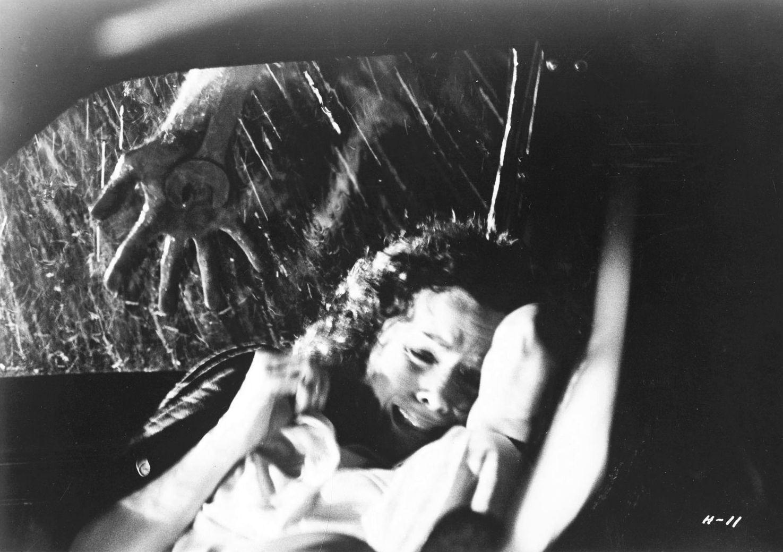 Halloween 1978 English (US) (With images) Halloween