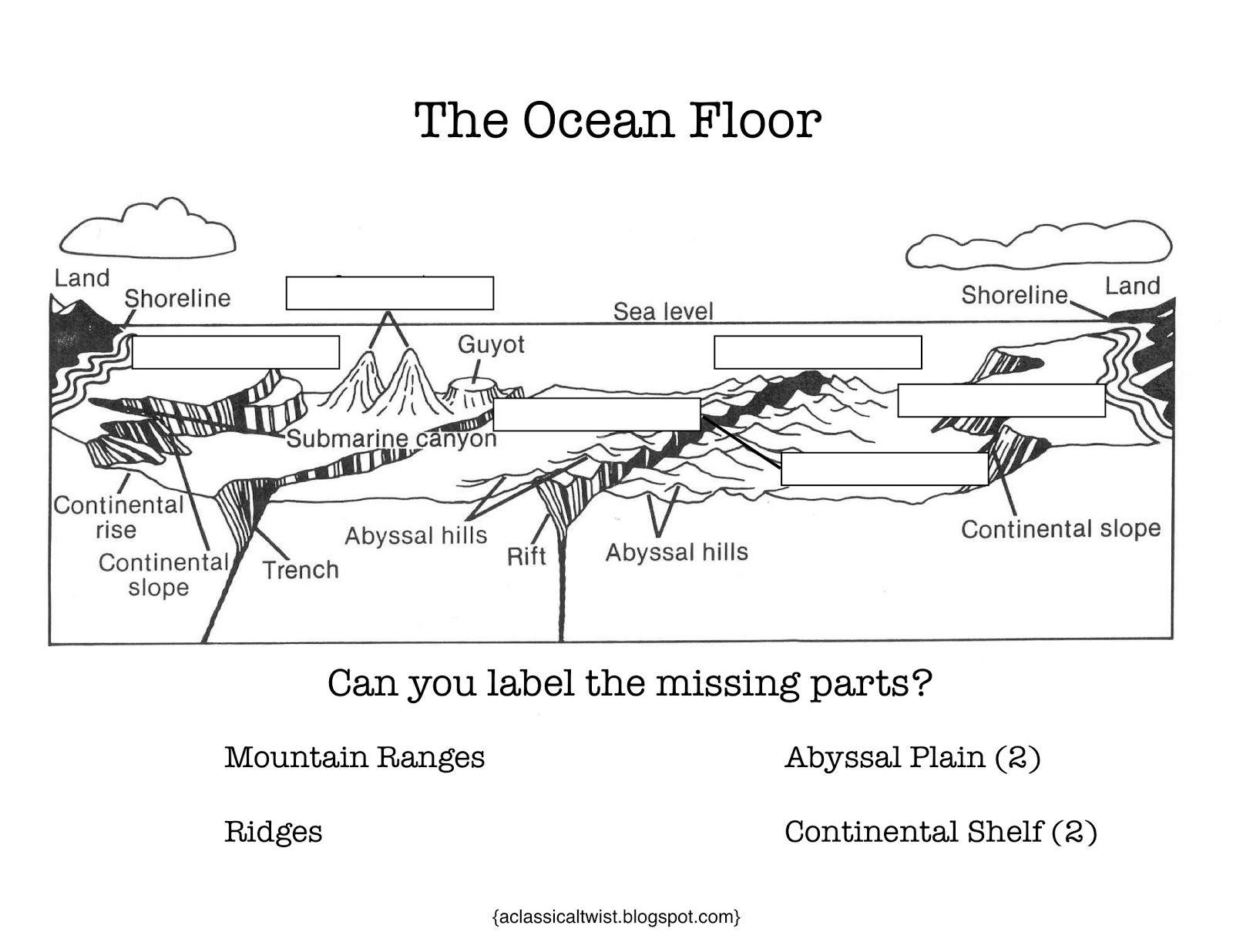 Worksheets Ocean Zones Worksheet homeschooling with a classical twist cc review at home good cycle week 18 ocean floor
