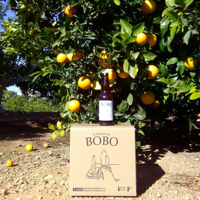 El Rincón del Bobo. Nuestro campo de naranjos