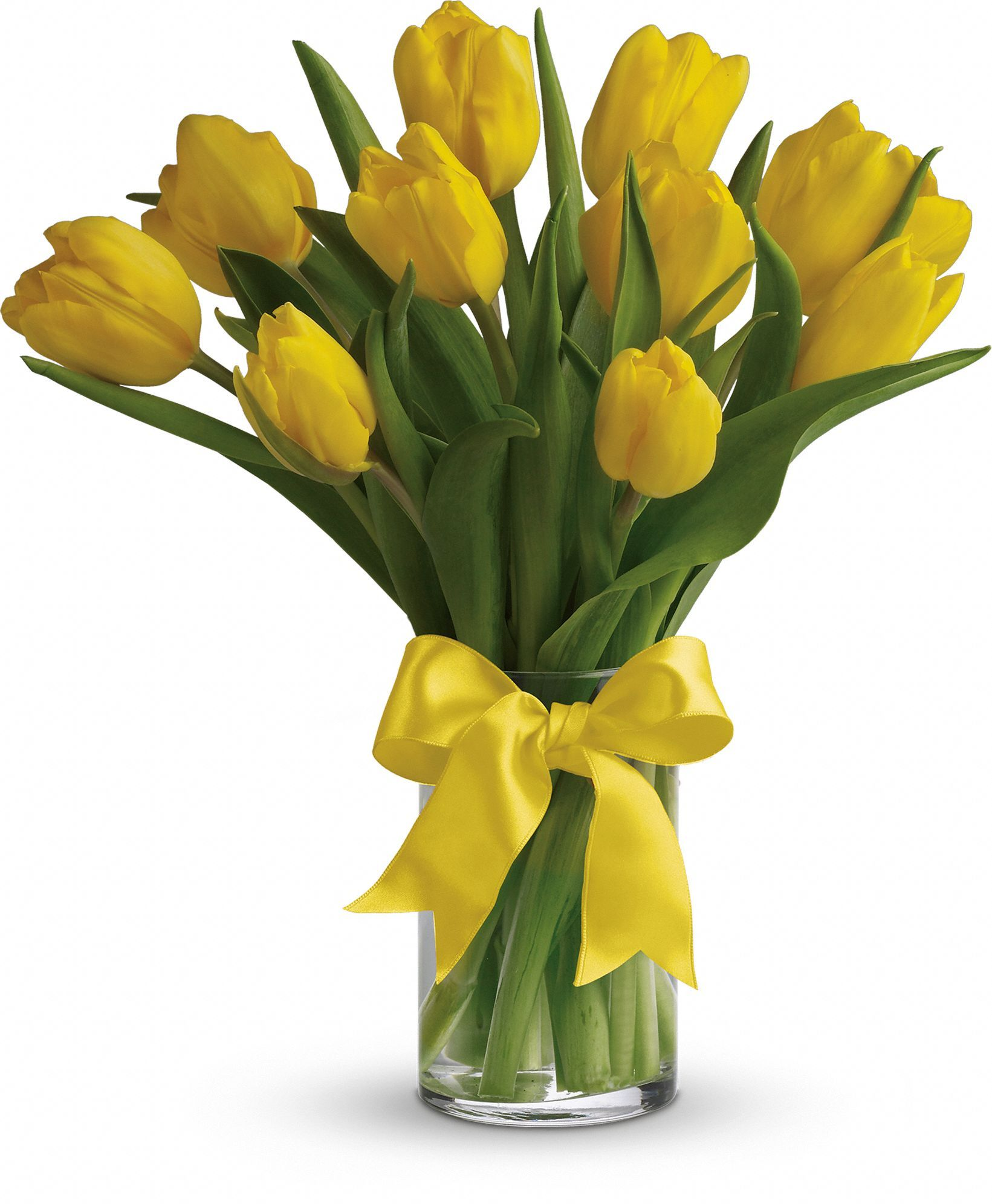 Sunny yellow tulips flowers pinterest yellow tulips flowers flowers flower delivery send flowers online mightylinksfo