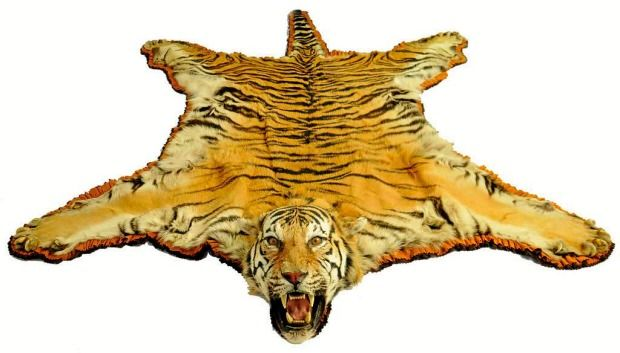 Antiques With Animal Magnetism Animal Skin Rug Skin Rugs Lion Sculpture
