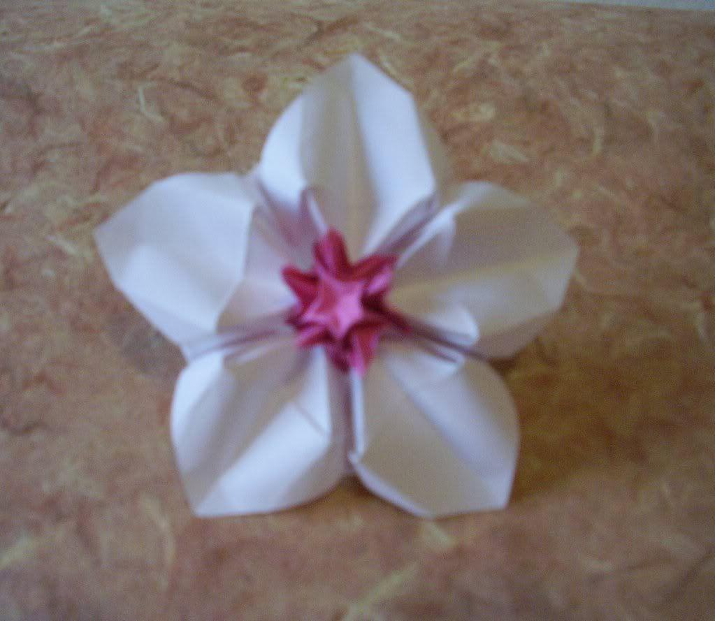 Origami flower designs httpcraftyvillesquidoo origami flower designs httpcraftyvillesquidooorigamiflowerdesigns mightylinksfo