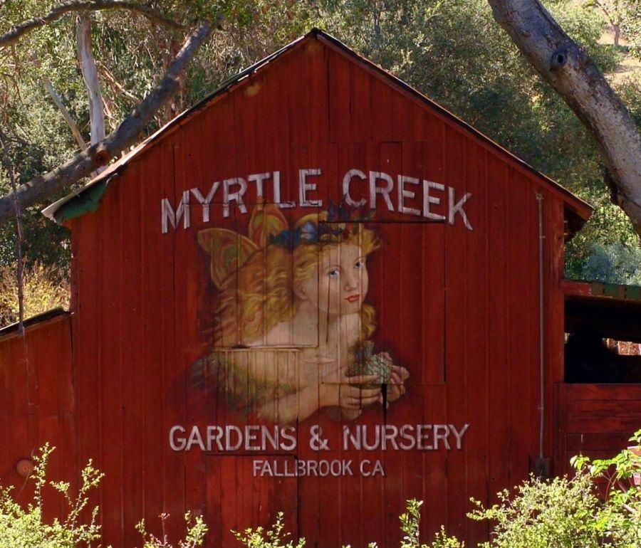 a51bc4dfc024f05b05f249d84ece010f - Myrtle Creek Botanical Gardens & Nursery Fallbrook Ca