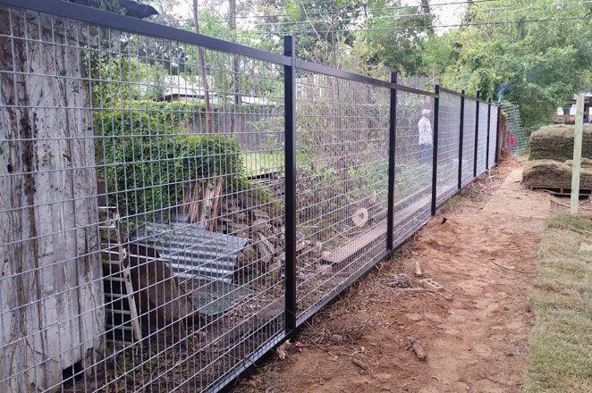 welded horse panel fence with black frame | Backyard | Pinterest