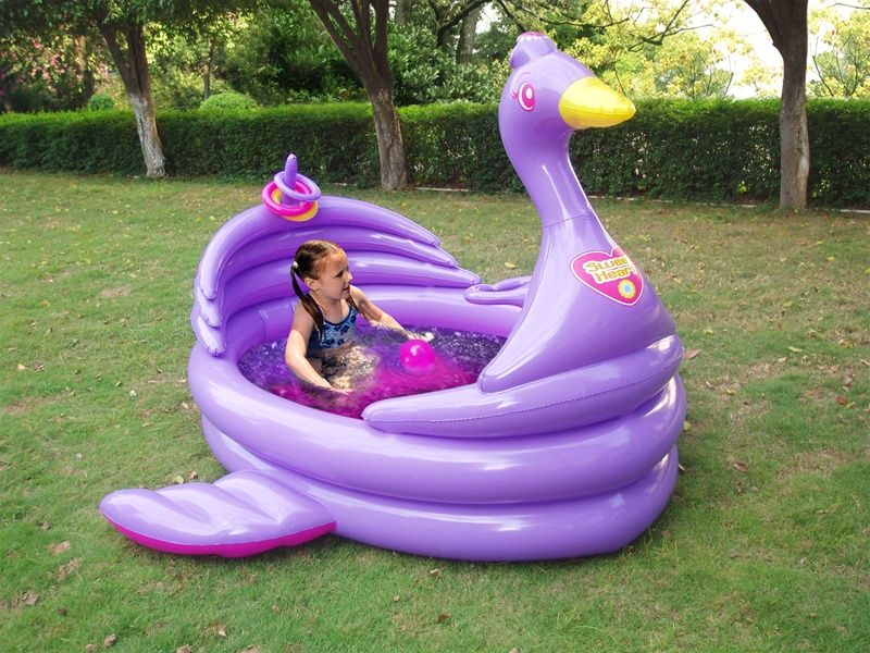 Backyard Ocean Pools | One Swan Activity Pool From Backyard Ocean, Two  Daughters, Water