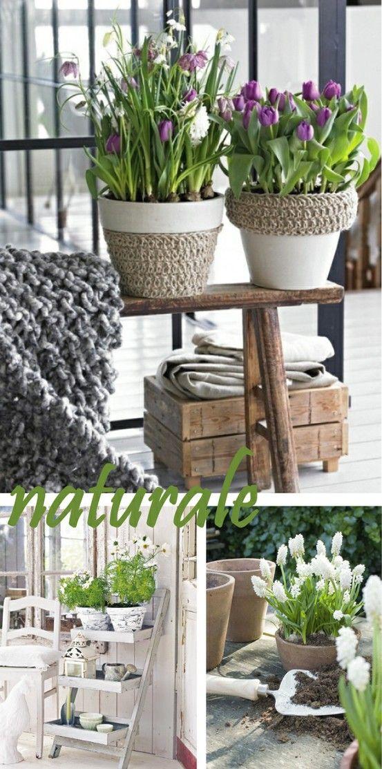 Dai bulbi di primavera gli spunti perfetti per giardini e for Giardini decorati