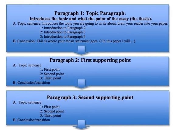 mastering the  paragraph essay part  essay writing