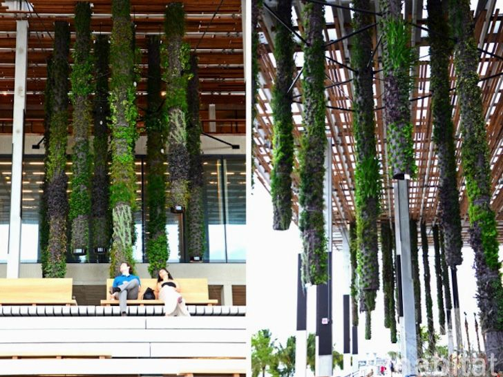 Marvelous Vertical Garden Inventor Patrick Blanc Has Created A Gorgeous Series Of  Hanging Live Gardens For The Perez Art Museum In Miami.