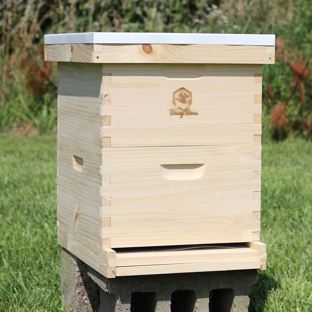 10 Frame Beehive Complete Kit 2 Deep Boxes Frames Foundations Bee Hive Bee Keeping 10 Frame