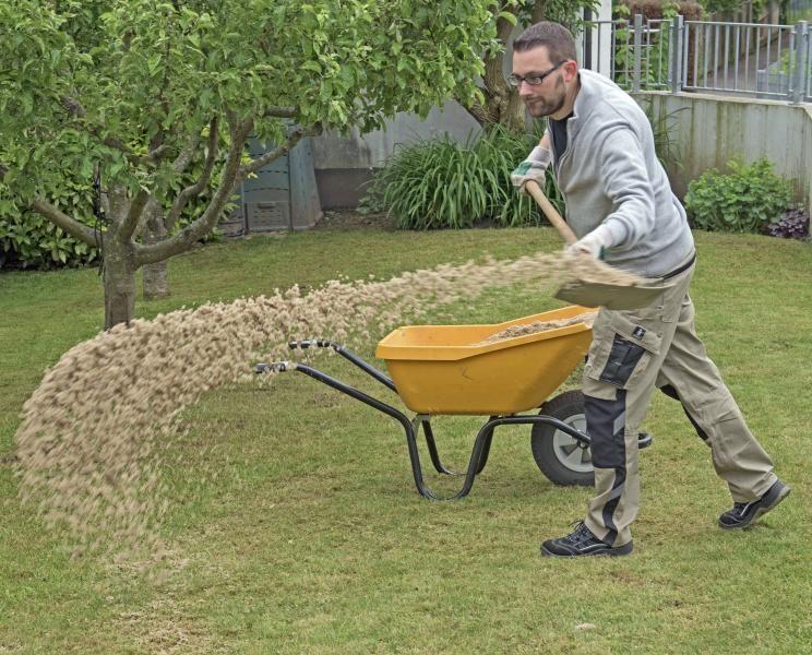moos im rasen erfolgreich bek mpfen ideen f r den garten lawn garden und amazing gardens. Black Bedroom Furniture Sets. Home Design Ideas